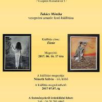 Takács Mónika veszprémi amatőr festő kiállítása