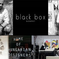 Papírinstalláció, faintarziás longboard, Black Box Budapest