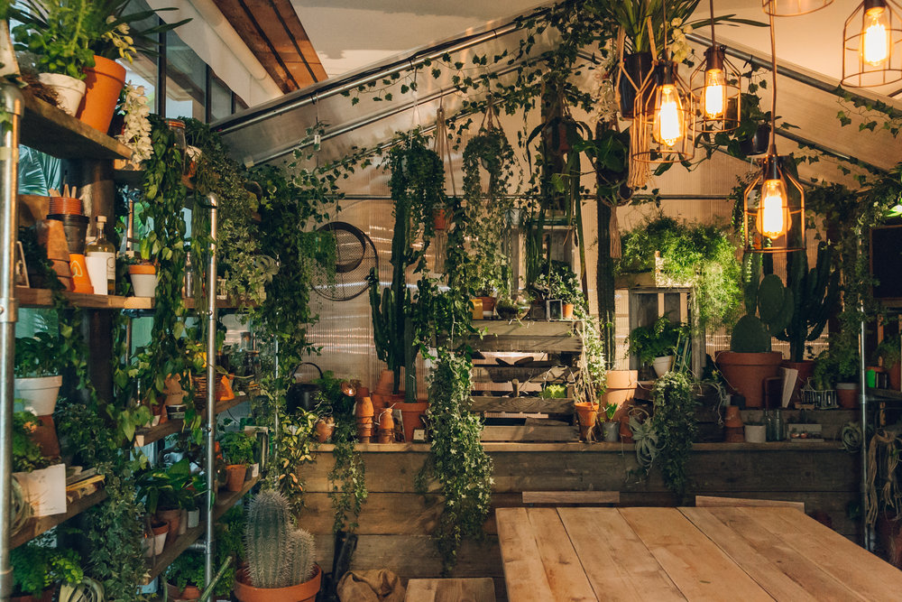 the_indoor_forest_in_the_outside_in_house_created_by_pantone_and_airbnb-.jpg
