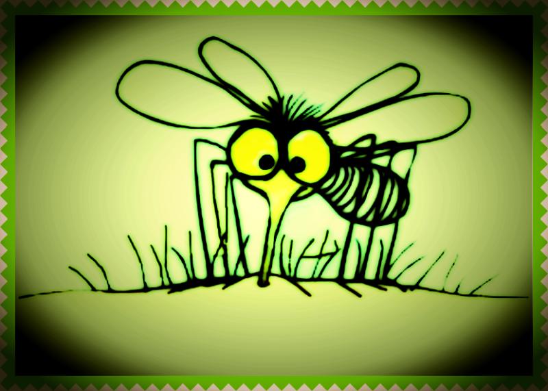 Mosquito kicsi.png