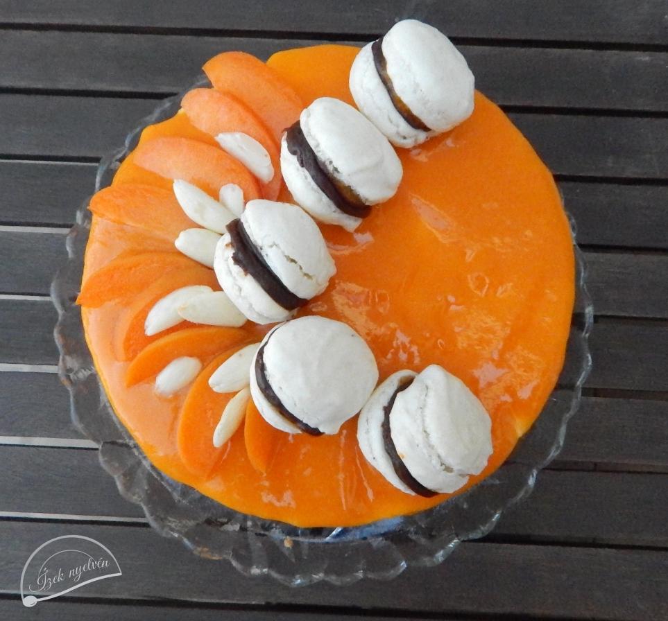 joghurtos_sargabarack_torta_macaronnal2.jpg