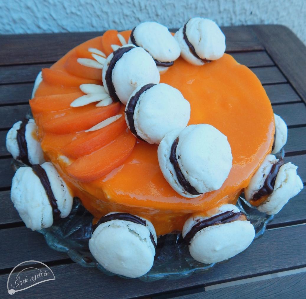 joghurtos_sargabarack_torta_macaronnal3.jpg