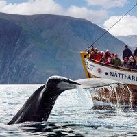 Három izgalmas izlandi kaland, amit kipróbáltunk és ajánlunk