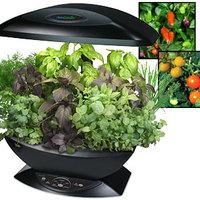 fűszernövények egy karnyújtásnyira....Aero grow garden...