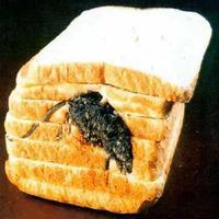A másodperc alapú kenyér
