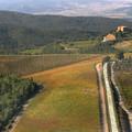Az erő sötét oldala a bor univerzumban: Montalcino és szegény Brunello