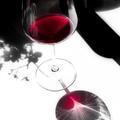 Hogyan ismerjük fel a borsznobot?