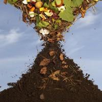 Újra pályázhatnak a fővárosi társasházak ingyenes komposztálókra az Ökoszolgálatnál