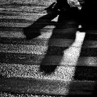 Jevgenyij Jevtusenko: Néhány gyöngéd napunk