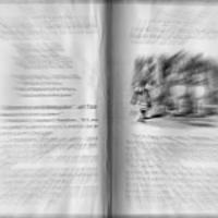 Fodor Ákos: Ajánlás