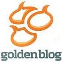Goldenblog 2008, Komplex kategória