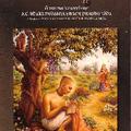 Nemcsak a maha-mantra vibrálója tisztul meg