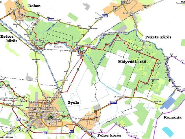 Gyula környéki túra -  A Mályvádi erdőben jártunk