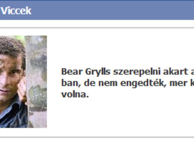 Bear a filmsztár...