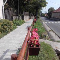 Virágos ládák és új padok Szentendrén
