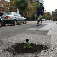 A bürokrácia tehetetlenségi ereje magával rántja a 2. kerületi kerékpárosokat is