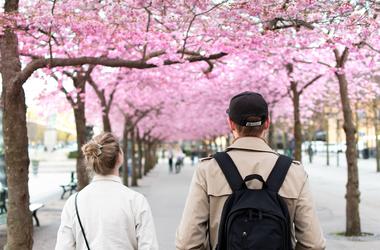 50 ok, amiért a gyalogosbarát utcák sokkal jobbak - 1. rész