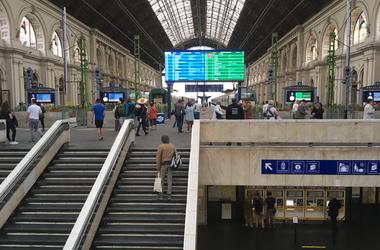 Cicamosdás a Keleti pályaudvar épületében (GALÉRIA)