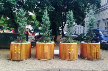 Megint fát ültettek a szelektívbe a Belvárosban