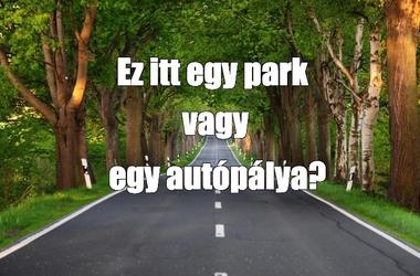 Belegondoltál már? A városi parkok is a közúthálózat részei.