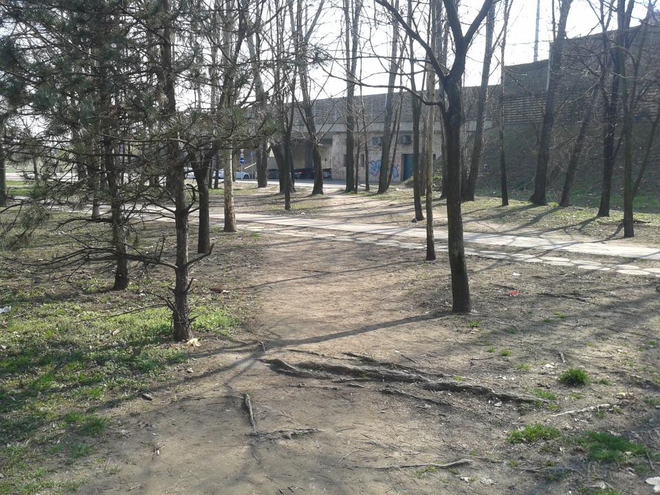 Fotó: Baksai-Szabó Kristóf