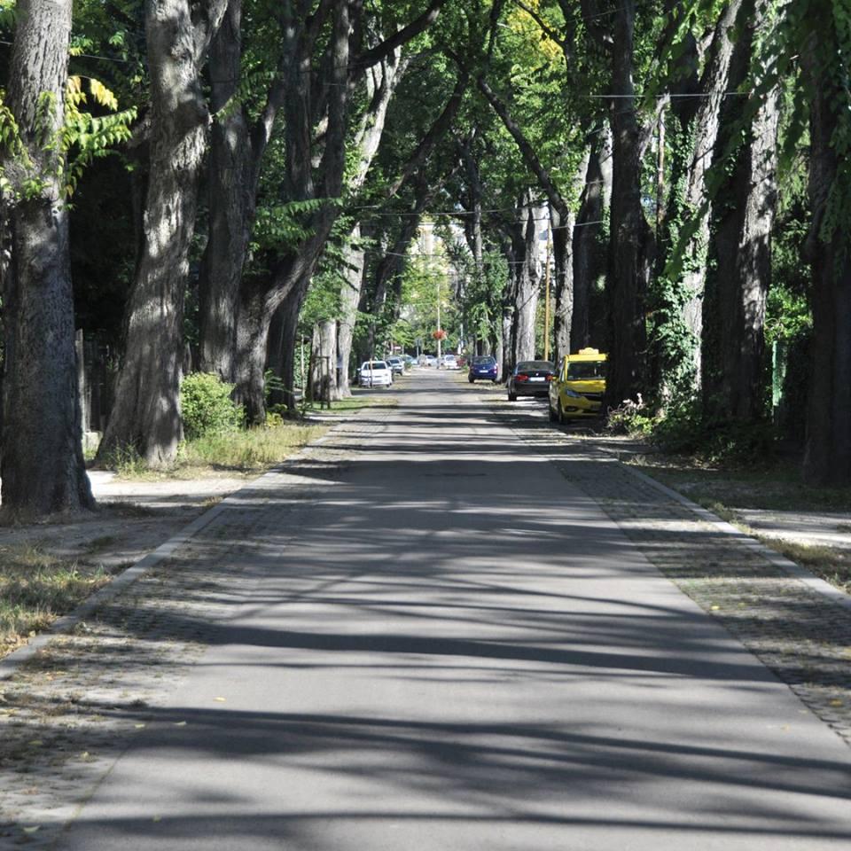 Az úttestek fizikai kialakítása mellett optikai megoldásokkal is lehet befolyásolni az autósok vezetési stílusát. Az utcák felezővonalának eltávolítása és a sávok keskenyítése a lassabb haladásra ösztönöz, és segít az alacsonyabb sebességhatár betartásában. XIX. kerület Szent Imre utca