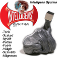 Intelligens gyurma