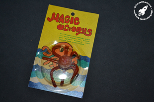 Magic Octopus