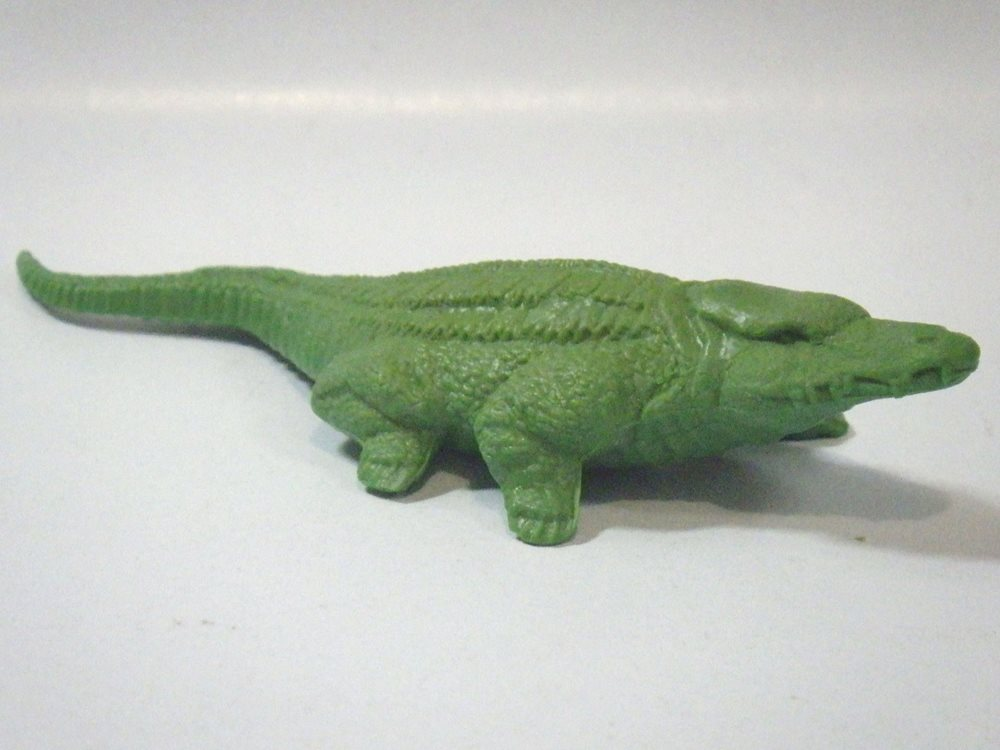 croc3_1.jpg