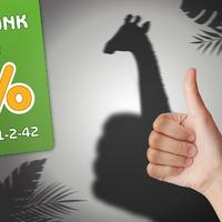 Ajánld fel adód 1%-át az Állatkert lakóinak!