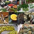275 millióból 9 ezer éhes szájat etetnek az Állatkertben
