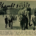 Így sétált az állatkert elefántja az Andrássy úton