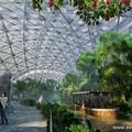 Jön az elmúlt 150 év legnagyobb állatkerti attrakciója