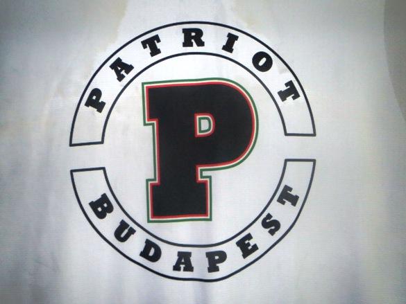 Patriot1.JPG