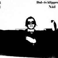 NáD: Nemzeti álláskereső Dal - és klippremier!