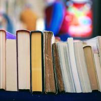 Mit olvassunk nyáron?