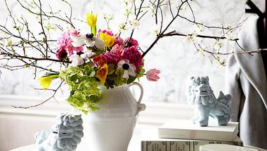 5 tavaszi virág a nappalidba