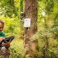 A dolgok internete segít a fáknak a klímakatasztrófa elleni harcban