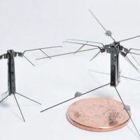 Rovarokról mintázott repülőrobotok