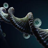 DNS-sel dolgozik egy blokklánc startup