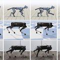 A Google új mozgásokra tanította meg robotkutyáját