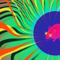 Mesterséges intelligencia vezérli az egeret a labirintusban
