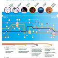 Szabvány telekom hálózatokra is alkalmazhatók a kvantumtechnológiák