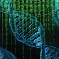 Rés a génelemző szoftveren