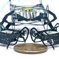 Csótányról mintázott, pénzérme méretű mikrorobotok