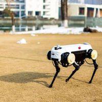 Robotkutyával köszönti Kína a Kutya évét