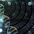 A világ első újraprogramozható DNS-számítógépe