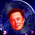 Elon Musk bitcoinban venné fel a fizetését