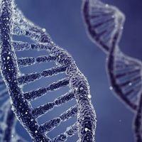 DNS alapján azonosít személyeket a program
