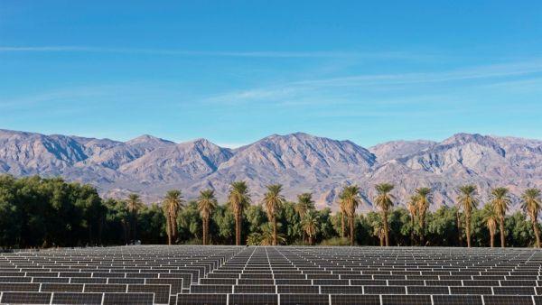 solarplant.jpg